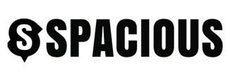Spacious logo