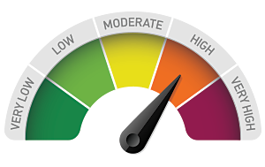 Image result for risk gauge